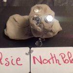 Elsie's North pole